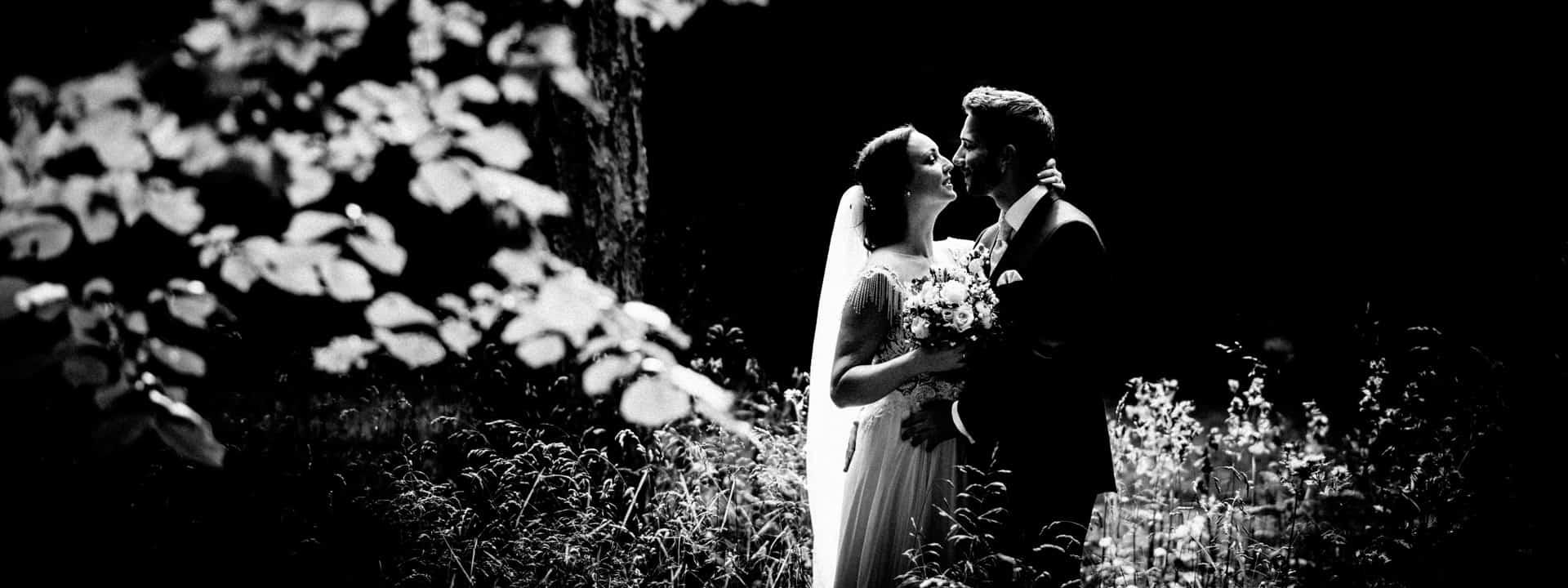 Brautpaar steht in einer hohen Wiese, die Sonne strahlt von hinten